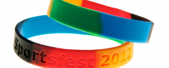 sectioned Charity Wristband