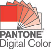PANTONE-digital-color-logo